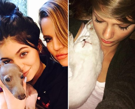 Kardashian Selfie Comparisons
