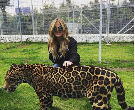 Khloe Kardashian Tiger